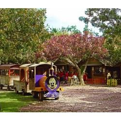 """Ατομικό Εισιτήριο για 2 βόλτες μέσα στο Πάρκο με το τρενάκι μας """"Ο Τρεχάλας"""""""