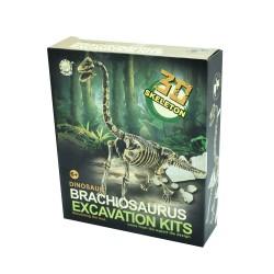 Αρχαιολογική Ανασκαφή - Βραχιόσαυρος