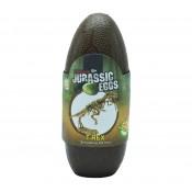 Αυγά Δεινοσαύρων (14)