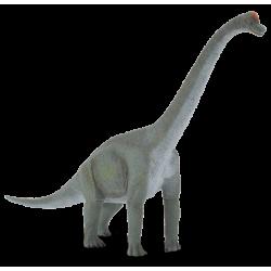Συλλεκτικές Φιγούρες Δεινοσαύρων, Συλλεκτικοί Δεινόσαυροι Βραχιόσαυρος